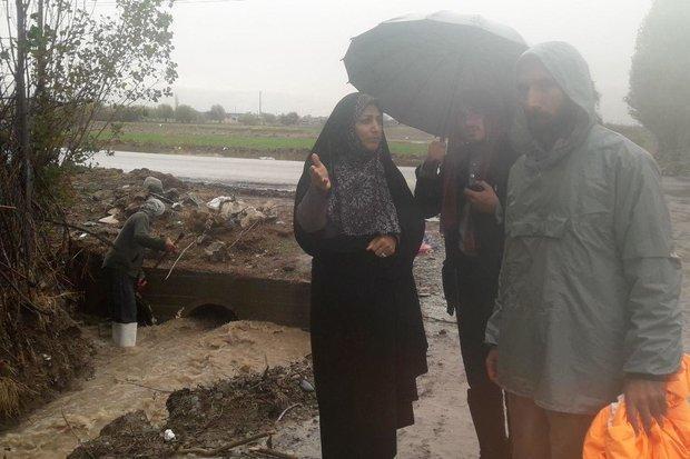 آبگرفتگی 5 روستای شهرستان بروجرد در بارندگی های شب گذشته