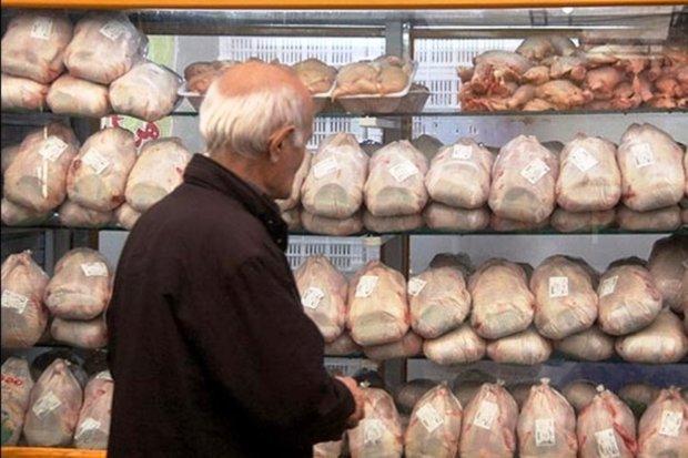 توزیع مرغ منجمد در استان مرکزی شروع شد، قیمت مرغ کاهش می یابد