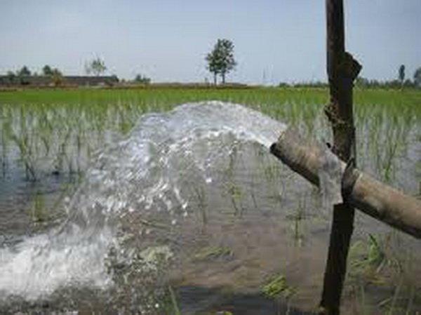 آبیاری باغات با آب شرب ممنوع است